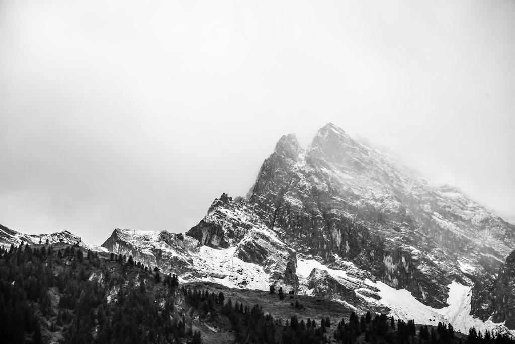Sneg i led