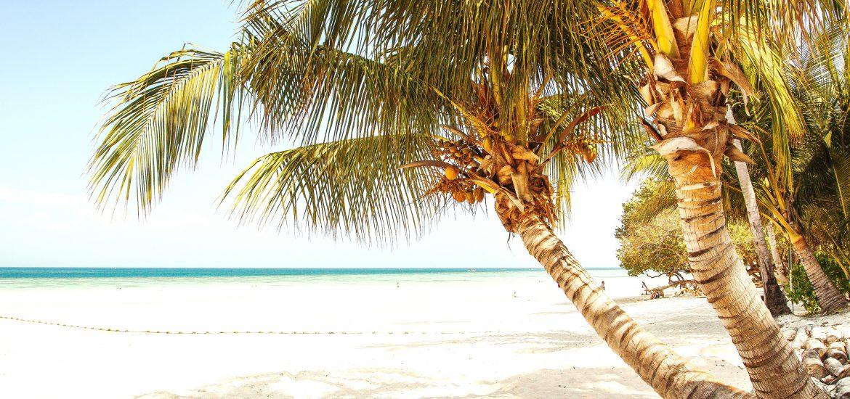 3 stvari koje bih ponela na pusto ostrvo