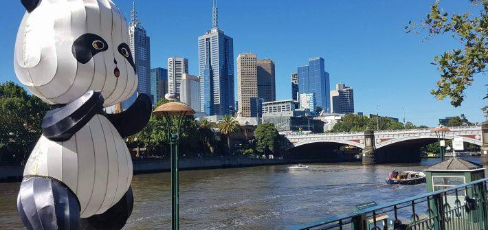 Pogled na Melburn©Ana Asanović