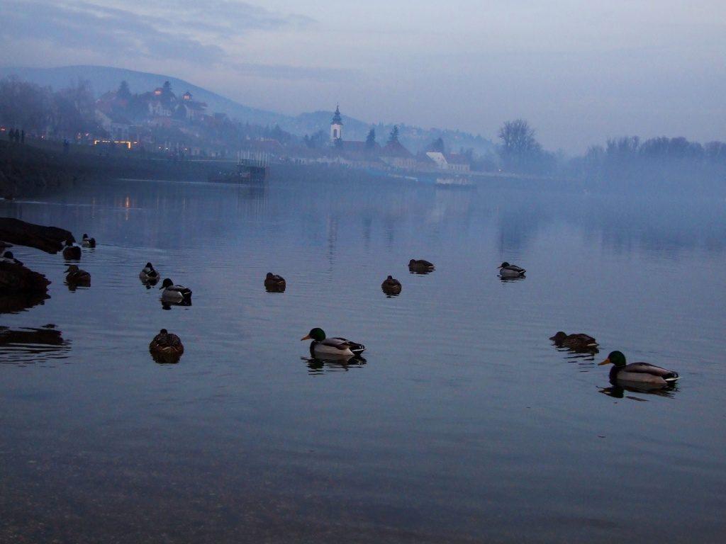 Na lepom, plavom Dunavu © According to Kristina