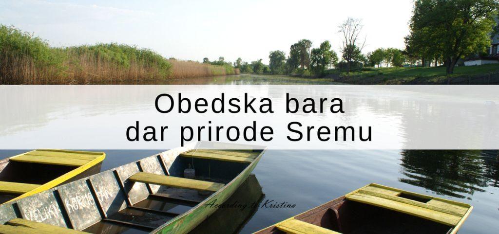 Obedska bara - dar prirode Sremu © According to Kristina