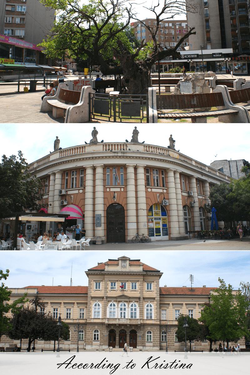 Karađorđev dud, zgrada starog Opštinskog doma, zgrada Okružnog suda © According to Kristina