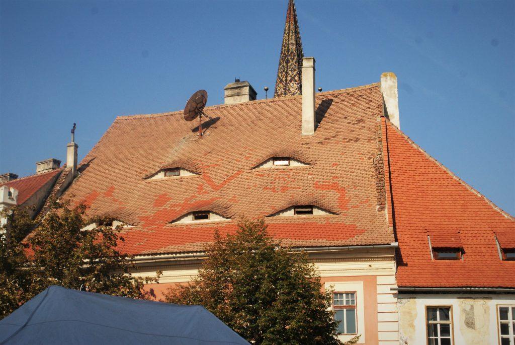 I krovovi imaju oči © According to Kristina