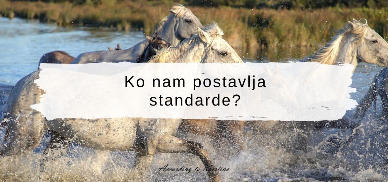 Ko nam postavlja standarde